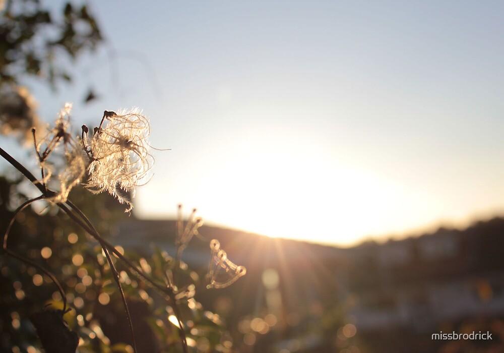Sunlight Over Cissbury Ring by missbrodrick