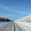 winter road by Cheryl Dunning