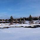 pinawa panorama by Cheryl Dunning