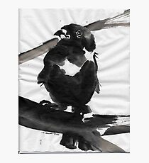 Sumi Bird Photographic Print