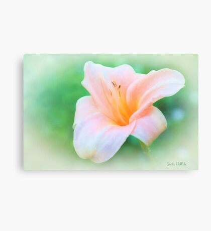 Glory of Summer Canvas Print