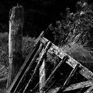 Broken gate, Brandon Hill, County Kilkenny, Ireland by Andrew Jones