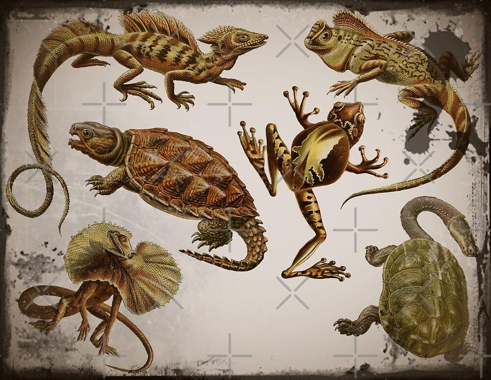Prehistoric Reptiles by diane  addis