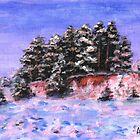 Winter Acoustics by Varvara Drokova