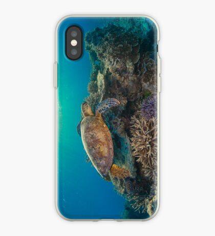 Sunset turtle iPhone Case