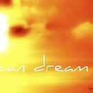 Even A Seagull can dream by qshaq