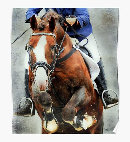 The show jumper Poster