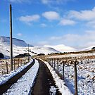 Snowy Mountain - Brecon Beacons by Radeon12345