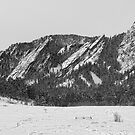 Boulder Colorado Flatirons With Snow BW by Bo Insogna
