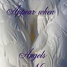 Feathers Appear when Angels are near by David Alexander Elder