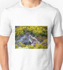 Summit Denizen T-Shirt
