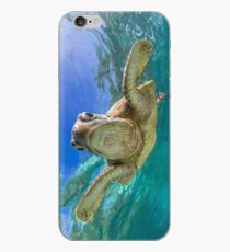 Sweet turtle iPhone Case