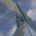 Erasmus bridge in Rotterdam by Henk van Kampen