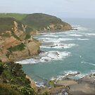 Great Ocean Road coast line by Andrew  MCKENZIE