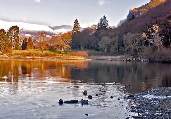 By The Lakeside - Derwentwater by Trevor Kersley