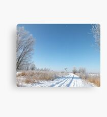 Silence of winter... Canvas Print