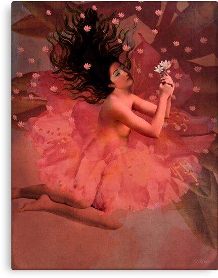 Blooming dreams by Catrin Welz-Stein