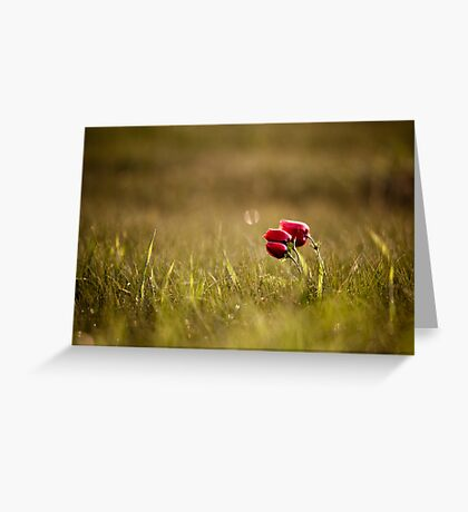 popping  Greeting Card