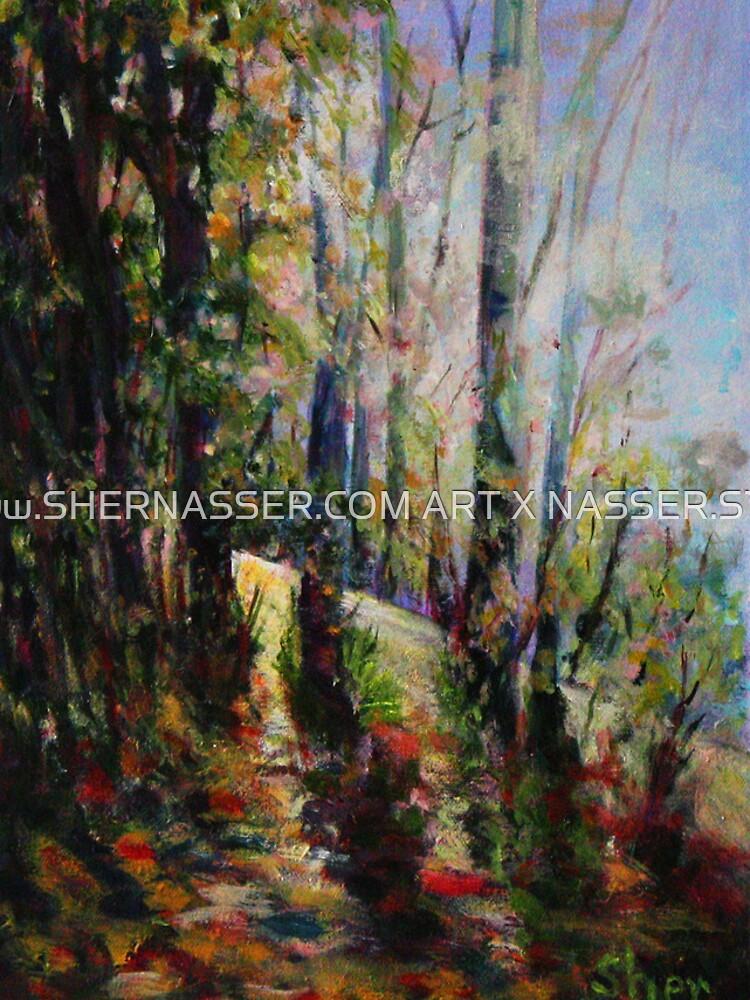 Enchanted Forest by shernasser