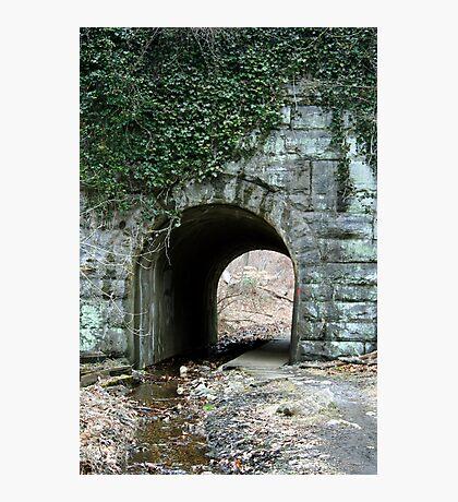 Under the tracks Photographic Print
