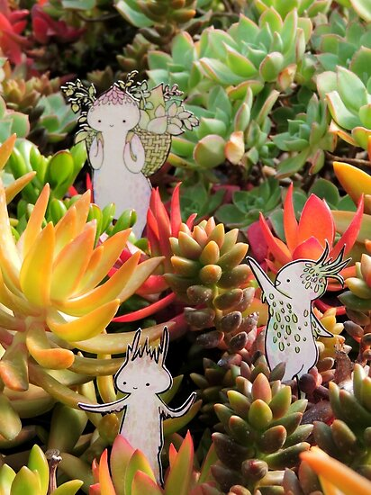 Succulent Exploration Party #1 by Leigh Ann Gagnon