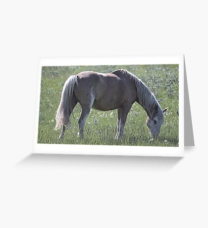 She's A Real Beauty Greeting Card