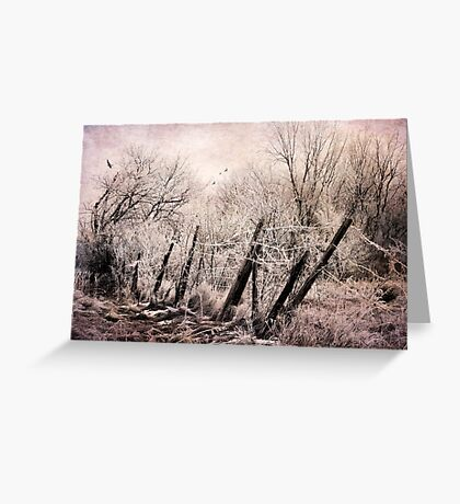 Pink Frost Greeting Card