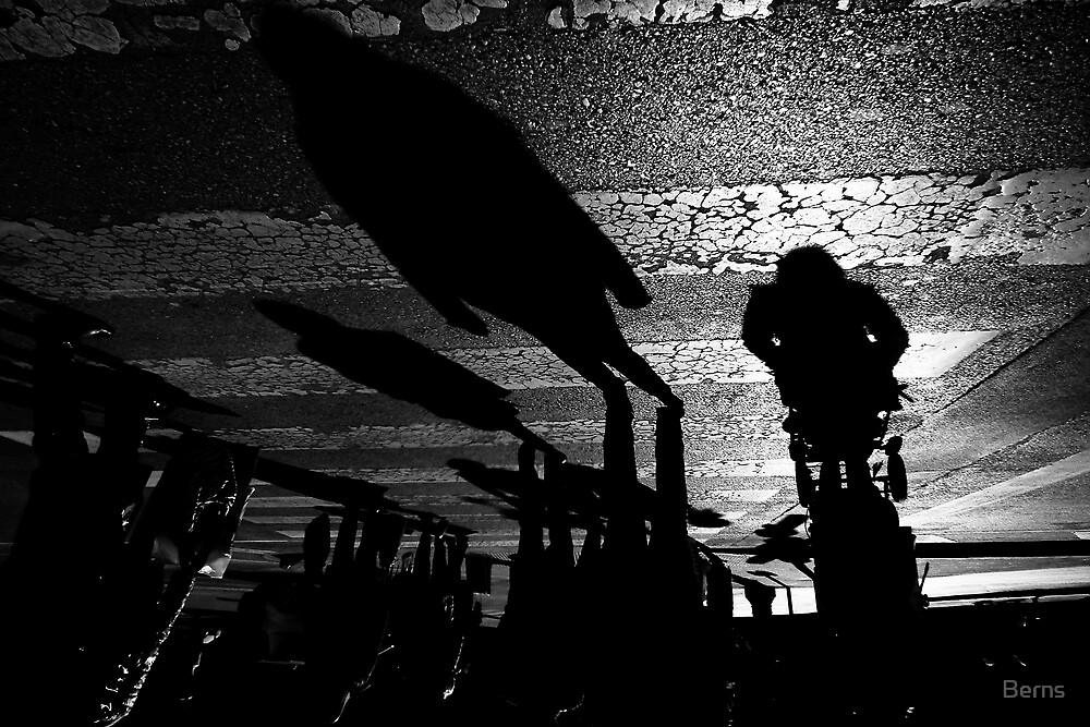 Following the Shadows across .. by Berns