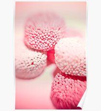 Pink Pleasures  Poster