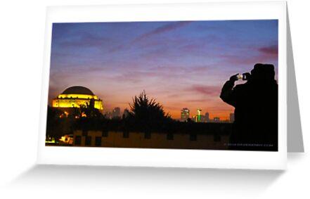 Shot of the Palace by David Denny