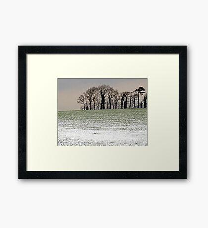 Winter Trees, Frozen Field Framed Print