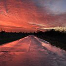 Road of reflections by Paul Blackwell