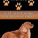 Royalty Of A Cavalier King Charles Spaniel by daphsam