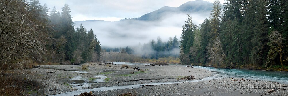 Hoh River Panorama by North22Gallery
