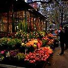 Flowers For Sale by Stephen Monro