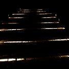 Torch Lights by Stephen Monro