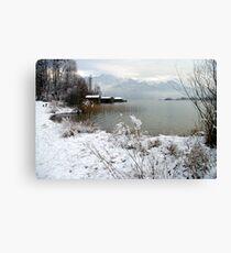 winter scene 2 Canvas Print