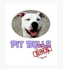 Pit Bulls Rock Photographic Print