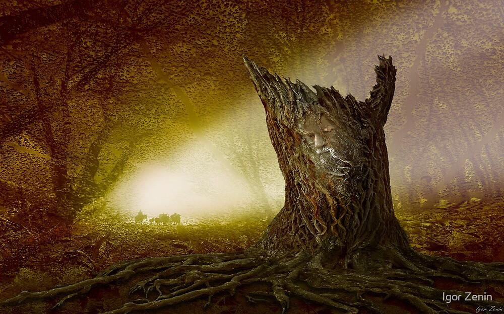 Norse Spirit by Igor Zenin