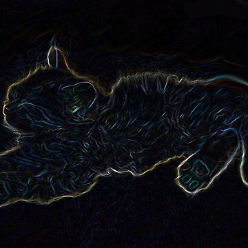 Colourful Kitten by LesterBear