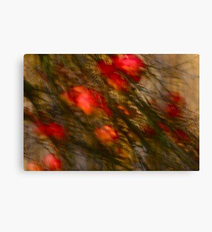 Views: 1426 *** Apple tree Abstract. by Andrzej Goszcz.   Canvas Print