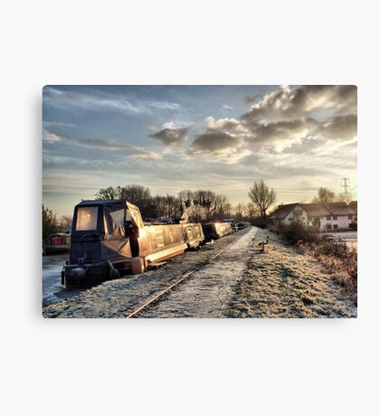 Cold and Frosty Canvas Print