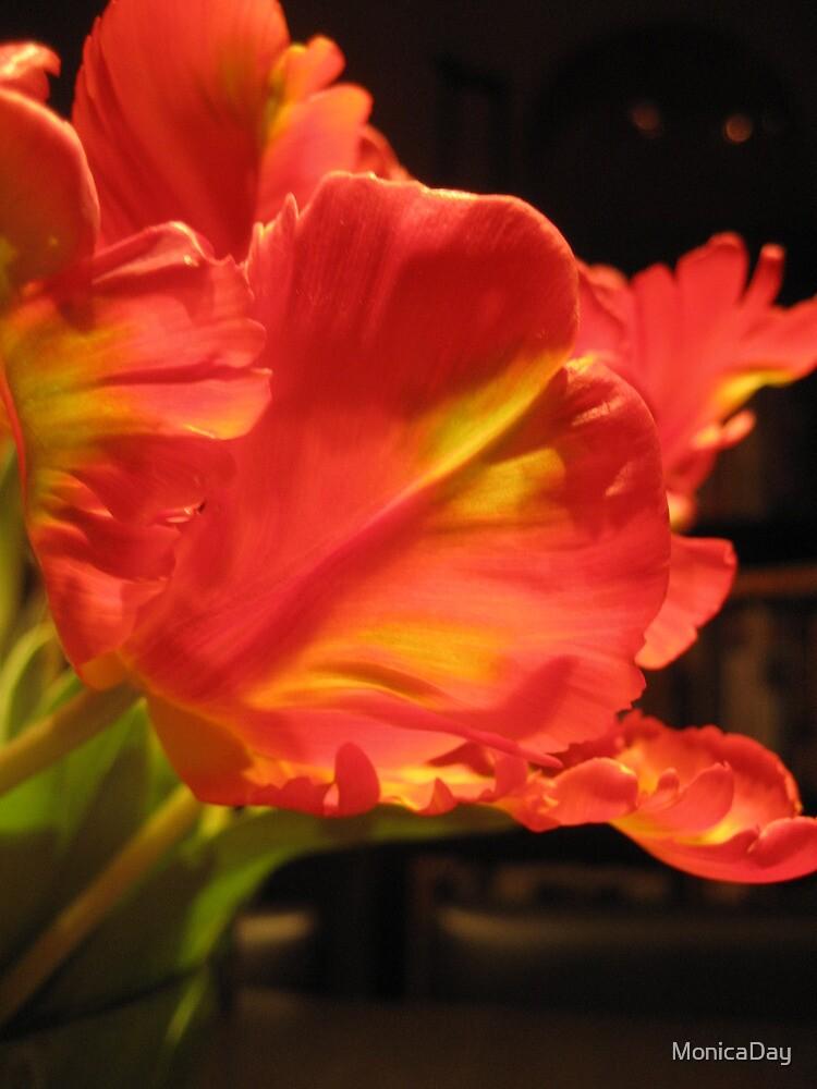 Vibrant Tulips 4 by MonicaDay