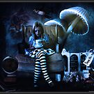 Alice by Shane Gallagher