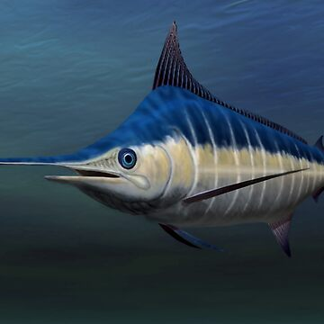 Blue Marlin by Skyviper