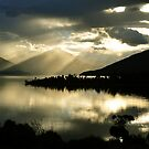 Lake Te Anau. South Island, New Zealand by Ralph de Zilva