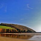 Caerhays Castle Bay. by AndyReeve