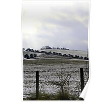 Winter, South Downs Poster