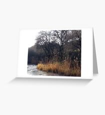 The Pond, Queen Elizabeth Country Park, Hampshire Greeting Card