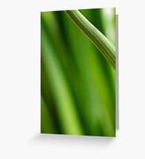 Stems Greeting Card